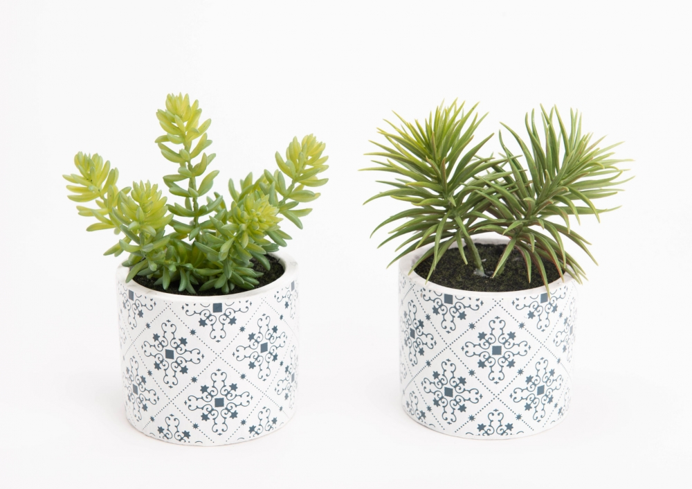 Set 2 plante artificiale in ghiveci decorativ Cactus H17cm imagine 2021 insignis.ro